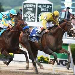 Belmont Stakes Superior Package Hotel Info Photos